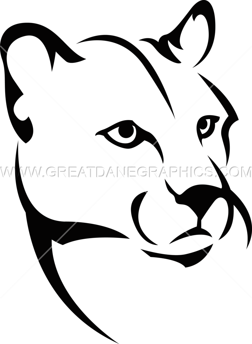 Cougar Face Line Drawing : Mountain lion production ready artwork for t shirt printing
