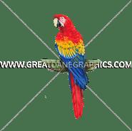 B-0942 Tri Color Macaw Digital Printing