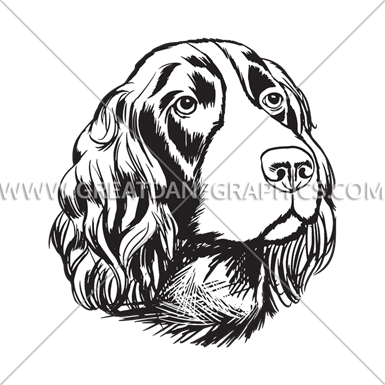 Springer Spaniel Production Ready Artwork For T Shirt